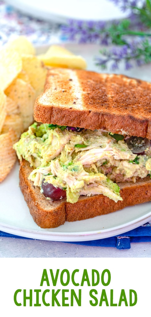 Avocado Chicken Salad -- This Avocado Chicken Salad is quick and easy to make for a delicious lunch on the go. I love grapes in chicken salad, but you can use any chicken salad add-ins you want! | wearenotmartha.com #chickensalad #easylunch #sandwiches #avocado