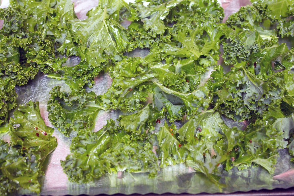 Baked kale just out of oven on baking sheet