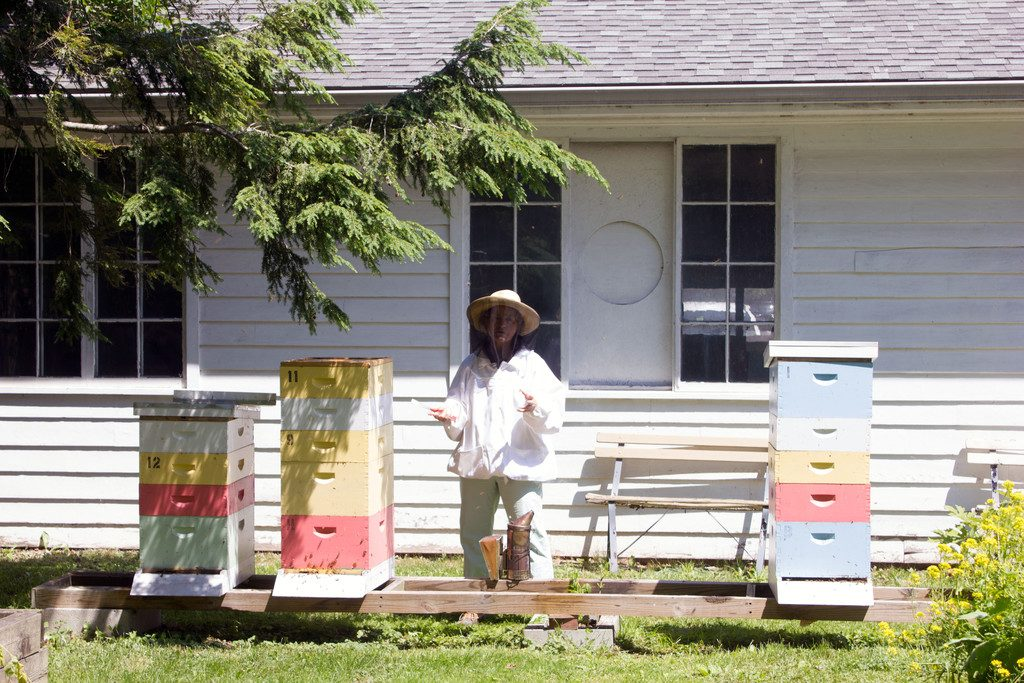 Basin-Harbor-Club-View-Bee-Keeping-4