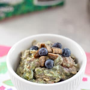Berry Egg Oatmeal for Dogs -- a fiber and protein-packed breakfast, this Berry Egg Oatmeal for Dogs is made with love and topped with treats for an extra special meal for your furry friend! | wearenotmartha.com