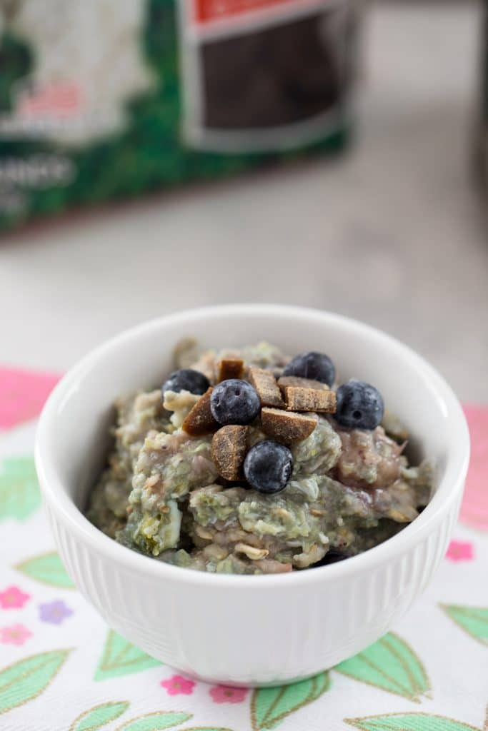 From the top shot of berry egg oatmeal for dogs in w white bowl on a floral napkin