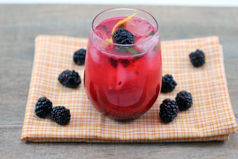 Blackberry-Lemon-Gin-Fizz-4.jpg