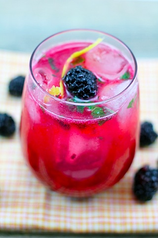 Blackberry-Lemon-Gin-Fizz-5.jpg