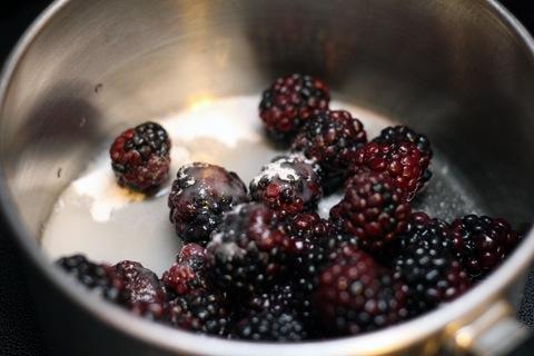 Blackberry-Lemon-Gin-Fizz-Blackberries.jpg