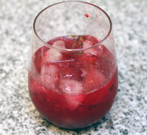 Blackberry-Lemon-Gin-Fizz-Glass.jpg