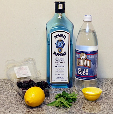 Blackberry-Lemon-Gin-Fizz-Ingredients.jpg
