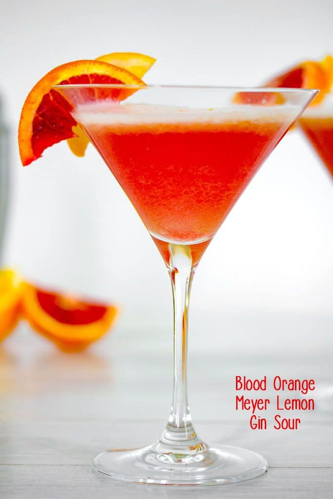 Head-on view of blood orange meyer lemon gin sour in a martini glass with a blood orange garnish, blood orange slices in the background and recipe title at bottom