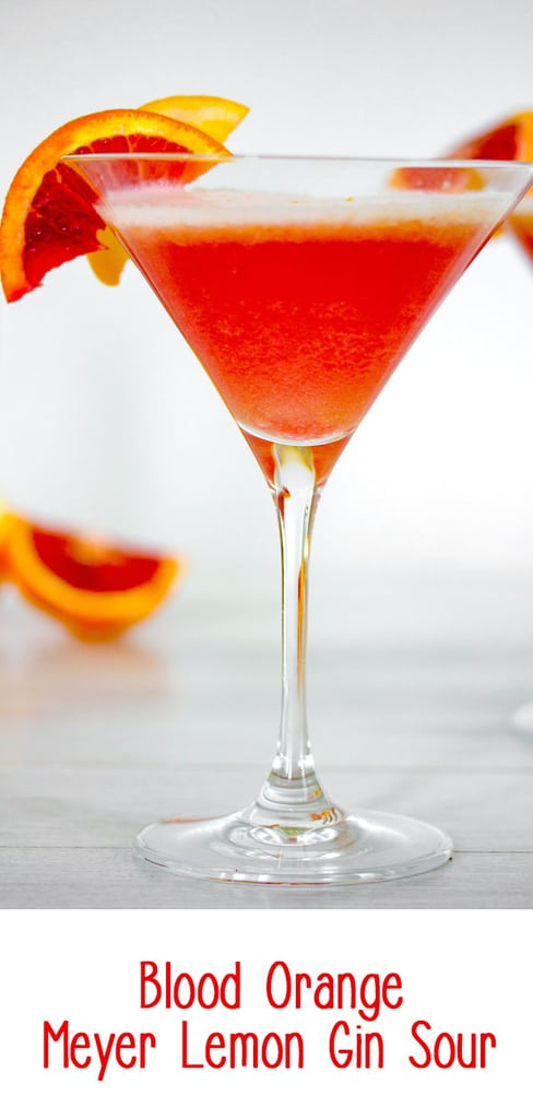 Blood Orange Meyer Lemon Gin Sour -- Winter citrus combines with gin and a little maple syrup for this Blood Orange Meyer Lemon Gin Sour. The vibrant color of a blood orange cocktail will always impress guests   wearenotmartha.com #gin #cocktails #sour #bloodorange #meyerlemon