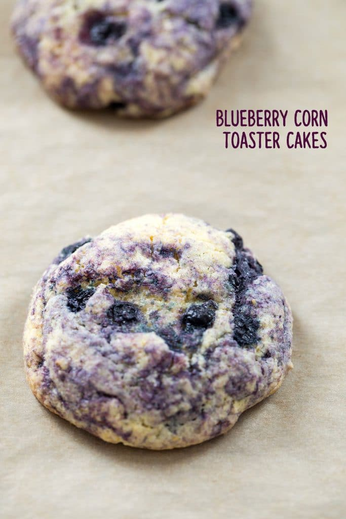Closeup of a Blueberry Corn Toaster Cake just out of the oven on a parchment paper-lined cookie sheet
