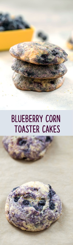 Blueberry Corn Toaster Cakes -- These are a cross between a cookie and a cake and will remind you of the Toast-R-Cakes you grew up with. Breakfast or dessert, anything goes with these homemade toaster cakes | wearenotmartha.com #blueberries #toastercakes #breakfast