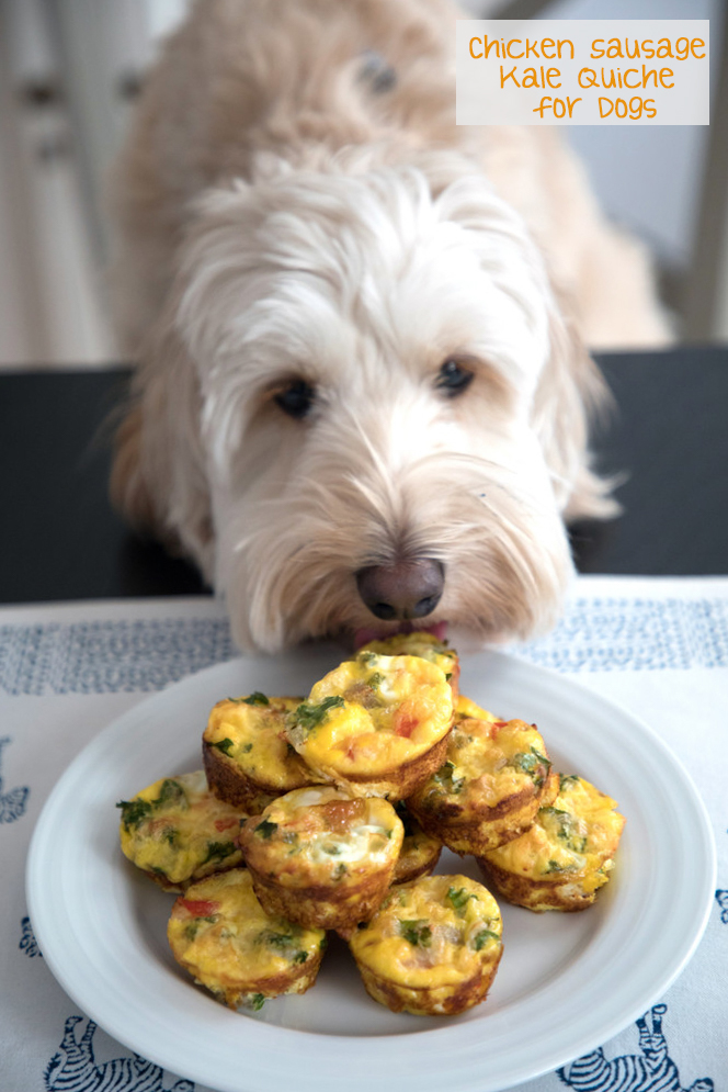 Chicken Sausage Kale Quiche For Dogs Recipe We Are Not Martha