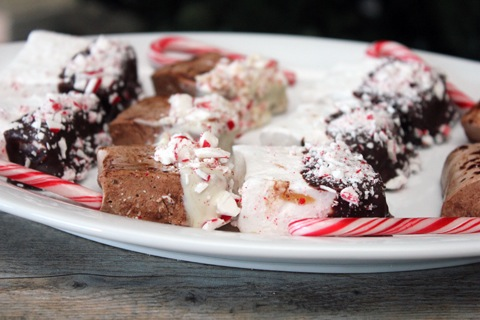 Chocolate-Covered-Peppermint-Marshmallow-1.jpg