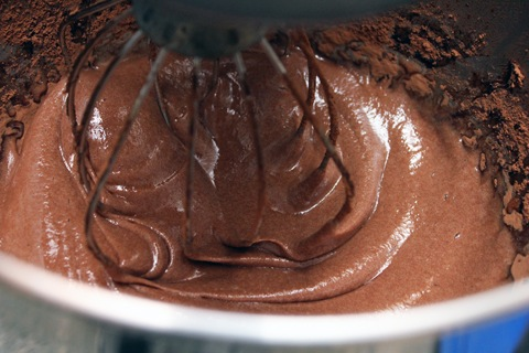 Chocolate-Covered-Peppermint-Marshmallow-Gelatin-Cocoa.jpg