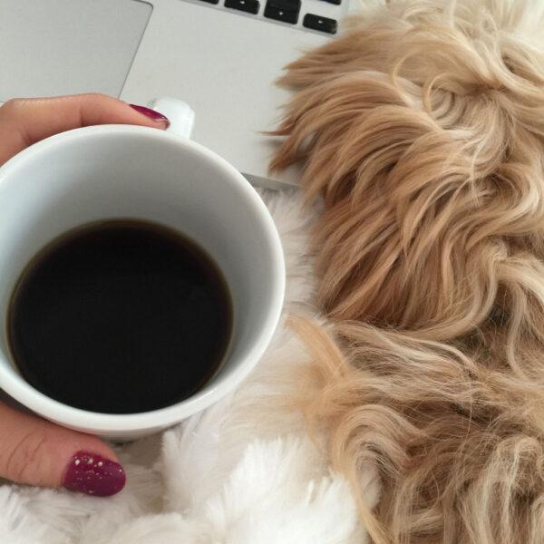 Coffee-blogging-Winnie