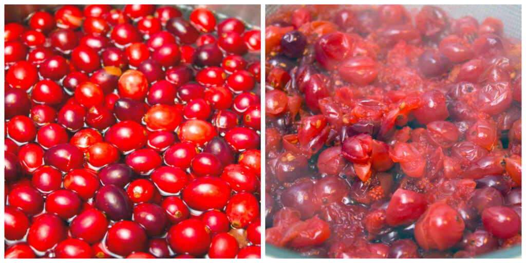Collage showing cranberry juice making process with one photo showing cranberries in water and another showing cranberries mashed