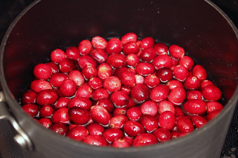 Cranberry-Mojito-Cranberries.jpg