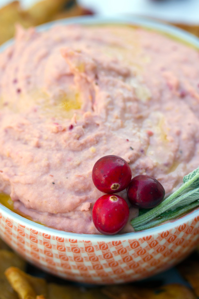 Cranberry_Hummus_Sage_Pita_Chips_7