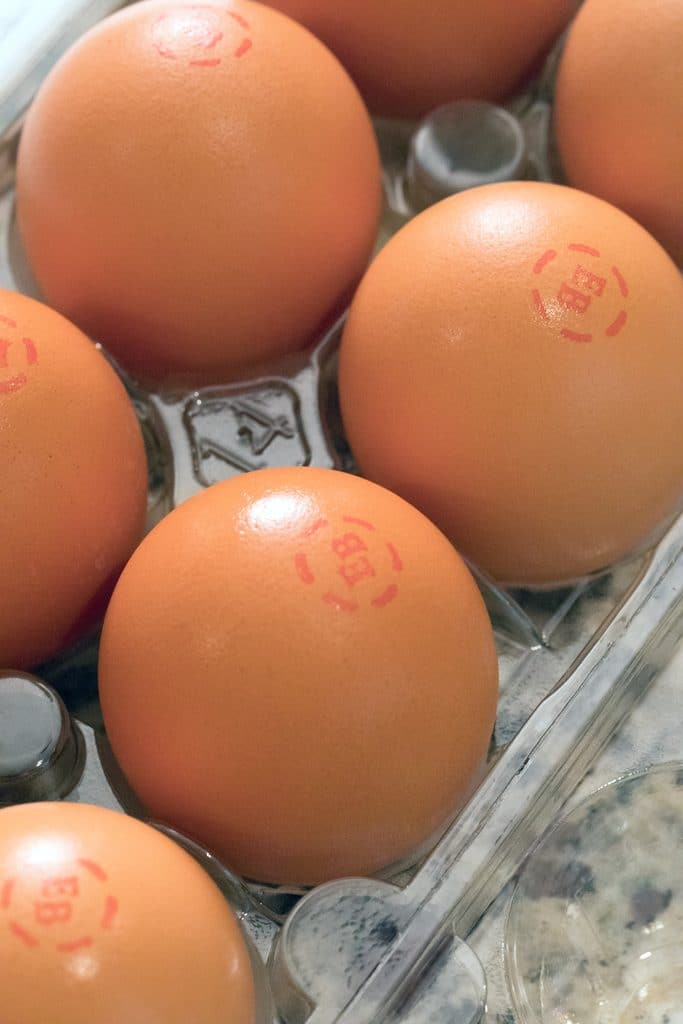 Large brown Eggland's Best Eggs in carton