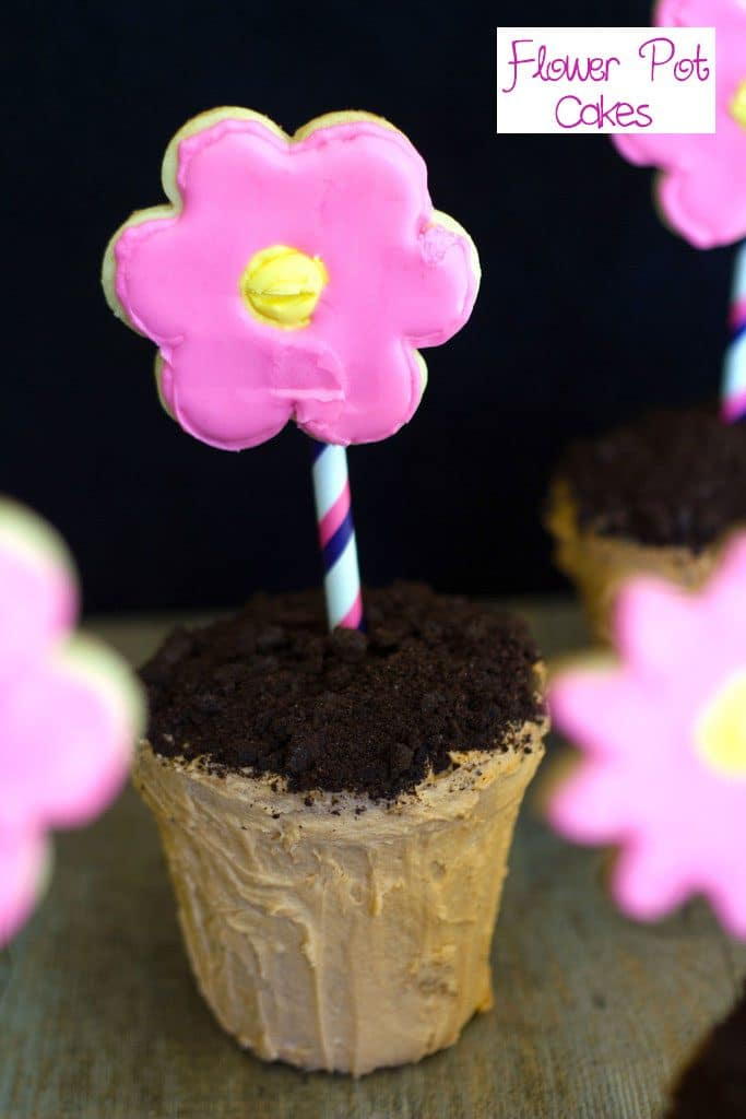 Head-on view of flower pot cake with chocolate cookie dirt and sugar cookie flower with recipe title at top of image
