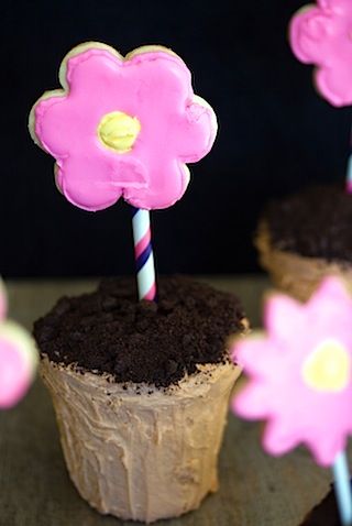 Flower Pot Cakes 3.jpg