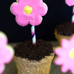 Flower Pot Cakes -- Spring is in the air and it's the perfect time to work on a fun baking project! These Flower Pot Cakes are adorable and and a great touch at spring parties | wearenotmartha.com