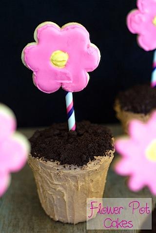 Flower Pot Cakes.jpg