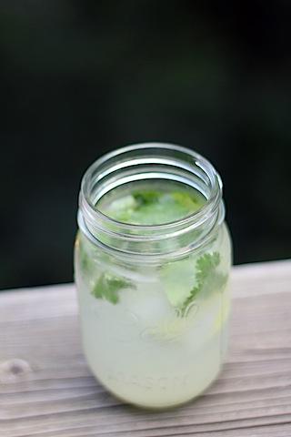 Gin-Lime-Ricky-2.jpg