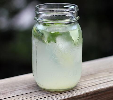Gin-Lime-Ricky-3.jpg