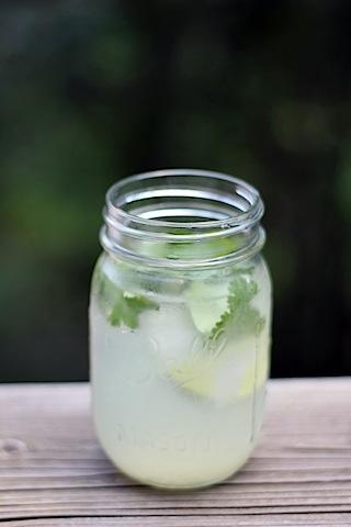 Gin-Lime-Ricky.jpg