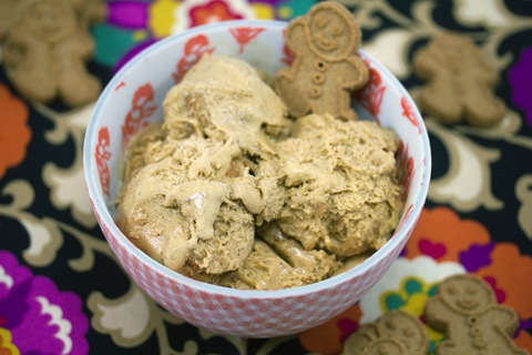Gingerbread Ice Cream 10.jpg