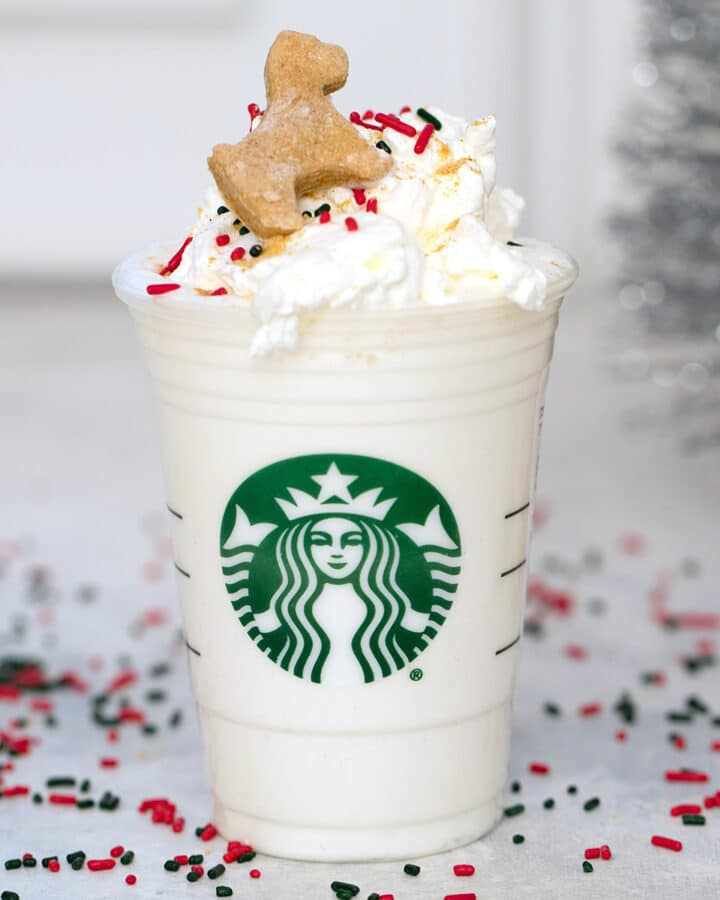 Gingerbread Puppuccinos with Gingerbread Cookies for Dogs -- Looking for a special holiday treat for your favorite dog? These Gingerbread Puppuccinos will give your dog something fun to sip on while you're enjoying all those holiday cocktails   wearenotmartha.com
