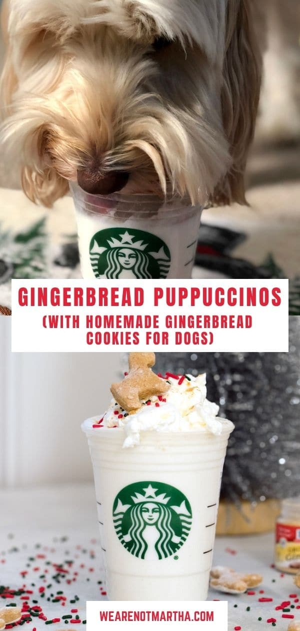 Gingerbread Puppuccinos with Gingerbread Cookies for Dogs