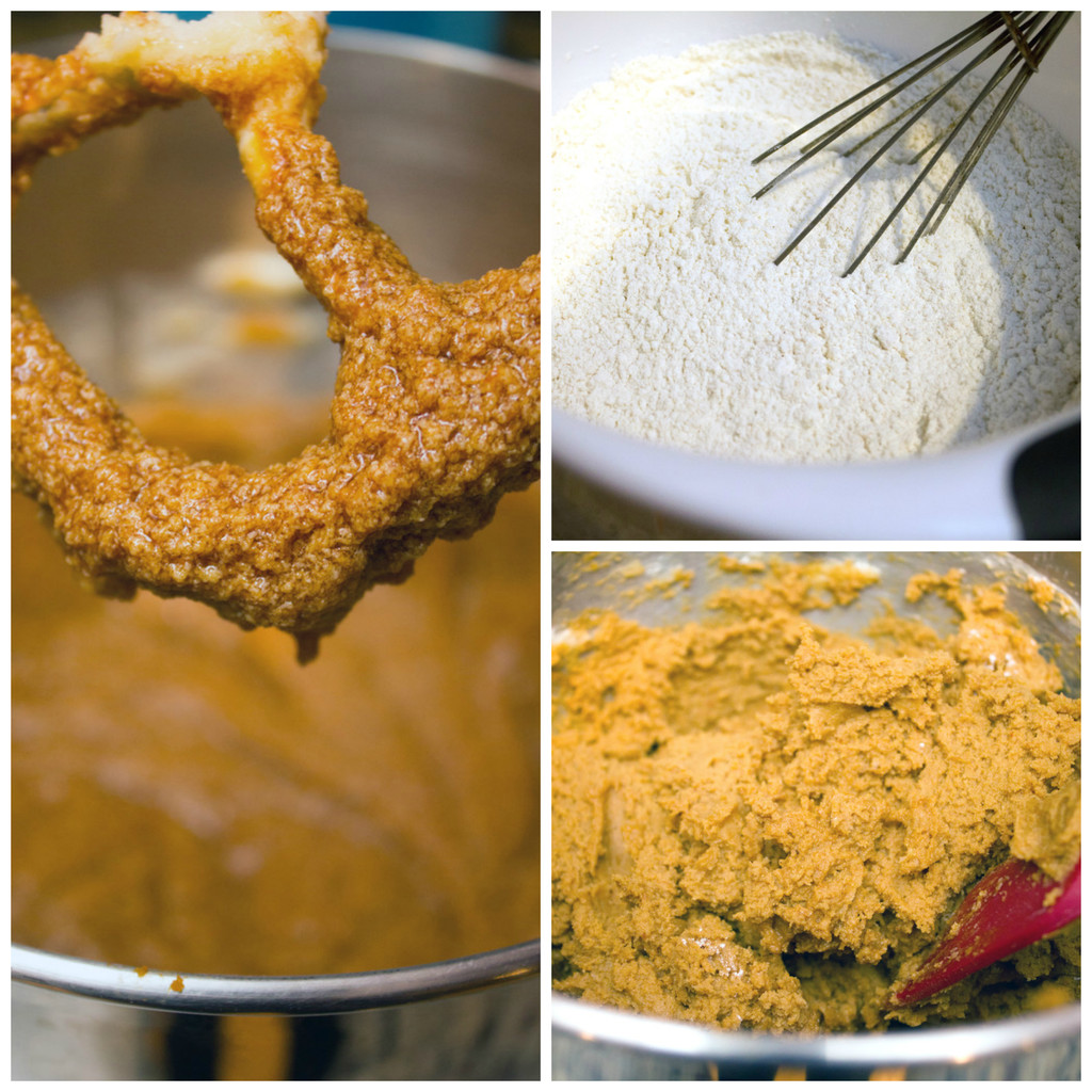 Gingersnap-Cookie-Dough-Batter