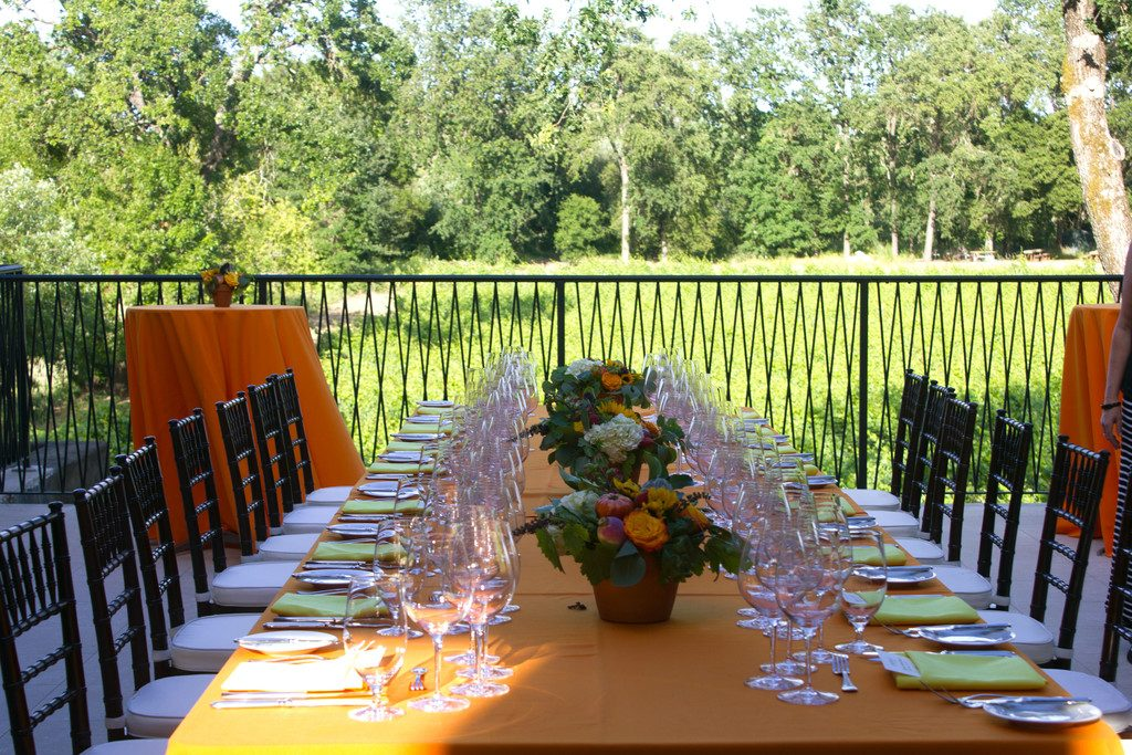 Gracianna Vineyard in Healdsburg | wearenotmartha.com
