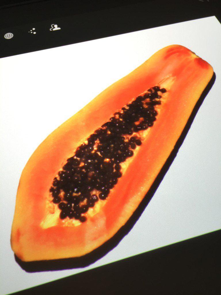 Papaya on HP Sprout|wearenotmartha.com