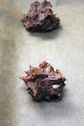 Hot-Cocoa-Cookies-Cookie-Sheet.jpg