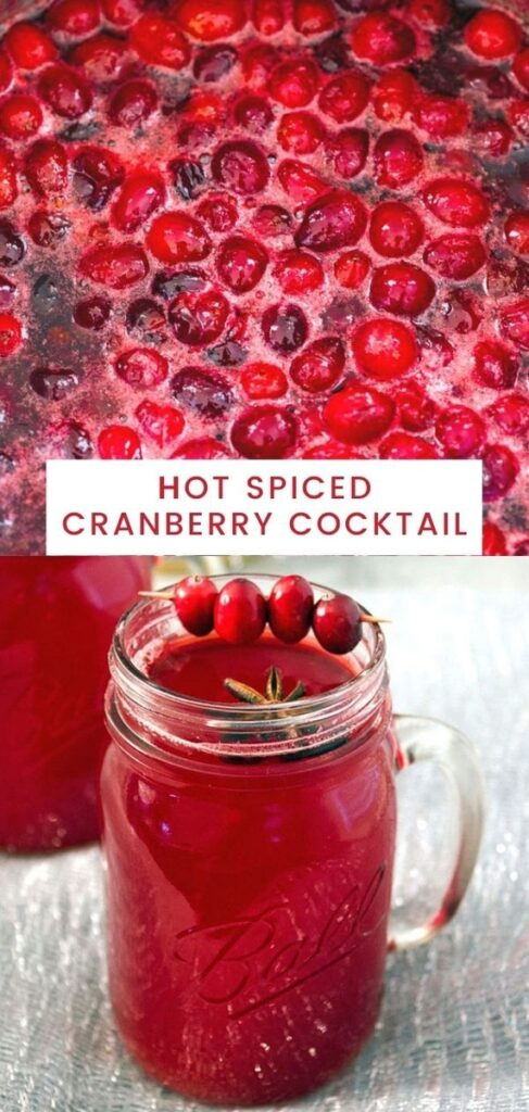 Making your own cranberry juice is so easy! Serve it warm with a little vodka and this Hot Spiced Cranberry Cocktail will put you right in the holiday spirit! | wearenotmartha.com #cranberrycocktail #cranberryjuice #hotcocktails #holidaydrinks