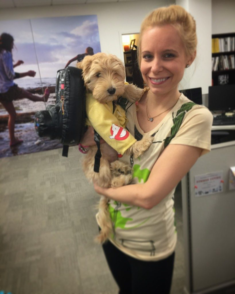Winnie Labradoodle Puppy Ghost Buster Costume 2