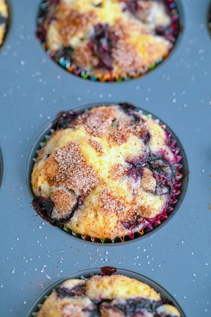 Overhead view of Jordan Marsh blueberry muffins baked in muffin tin just out of the oven