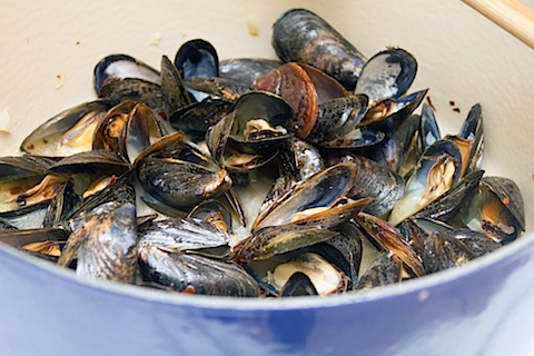 Lemon Fennel Risotto with Mussels Cooked.jpg