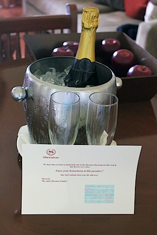 Los-Cabos-Honeymoon-Champagne.jpg