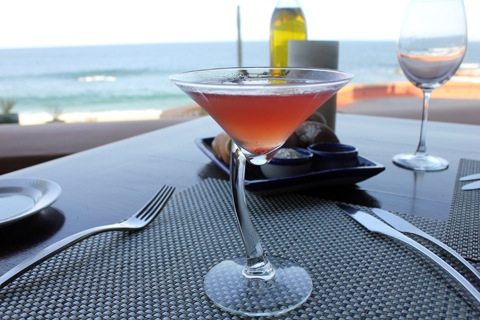 Los-Cabos-Honeymoon-Red-Basil-Martini.jpg