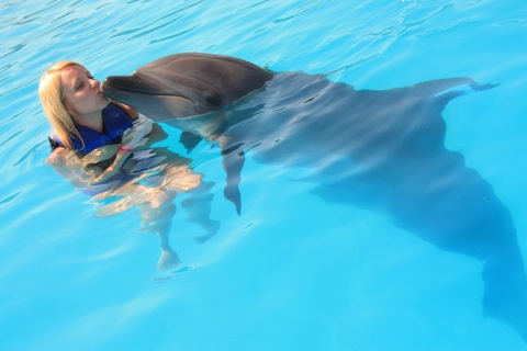 Los-Cabos-Honeymoon-Swim-with-Dolphins-6.jpg