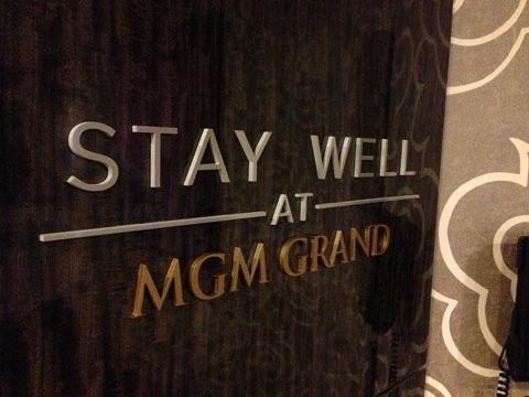 MGM Grand Stay Well.jpg