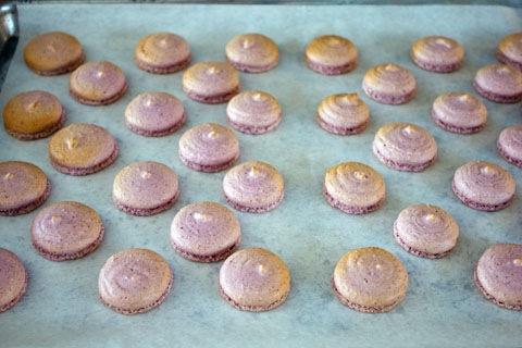 Macaron Making 9.jpg