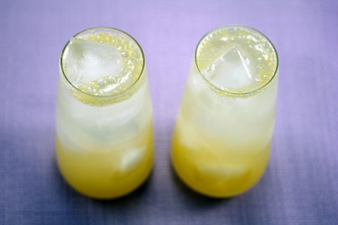 Meyer-Lemon-Tom-Collins-3.5.jpg