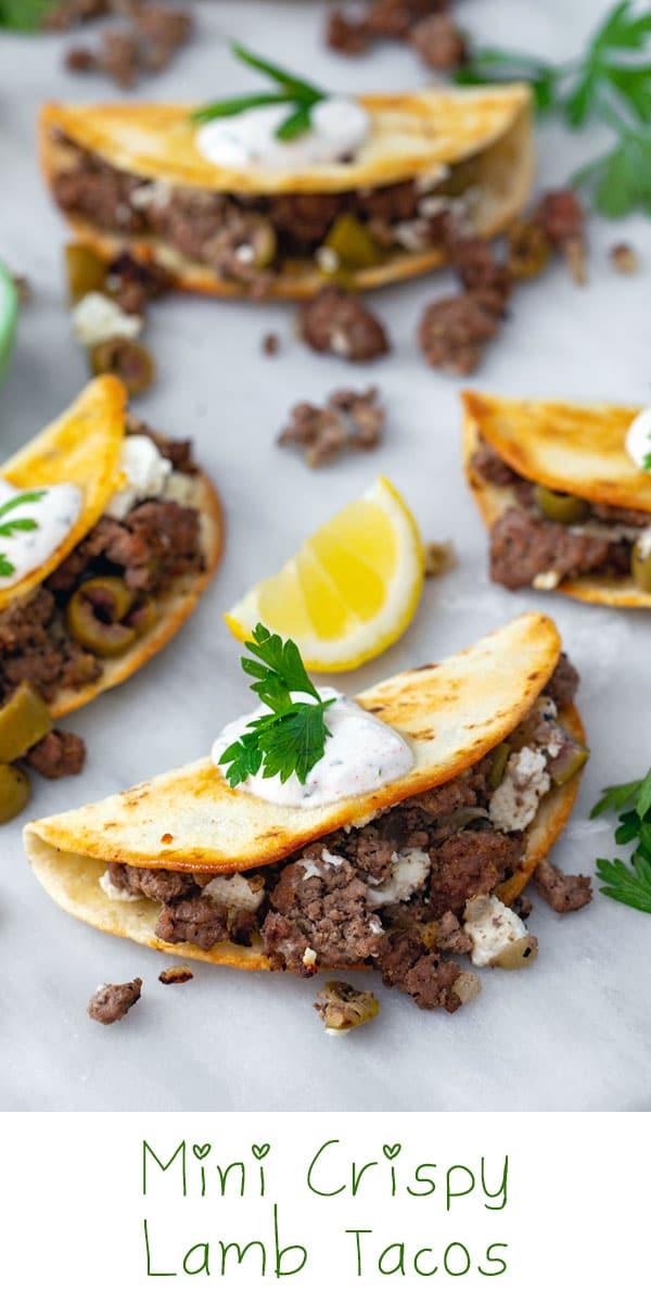 Mini Crispy Lamb Tacos