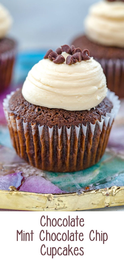 Chocolate Mint Chocolate Chip Cupcakes -- This recipe for Chocolate Mint Chocolate Chip Cupcakes is the only chocolate cupcake recipe you'll ever need! They're chocolatey and moist and even better when topped with Baileys frosting | wearenotmartha.com #cupcakes #mintchocolatechip #chocolate #baileys