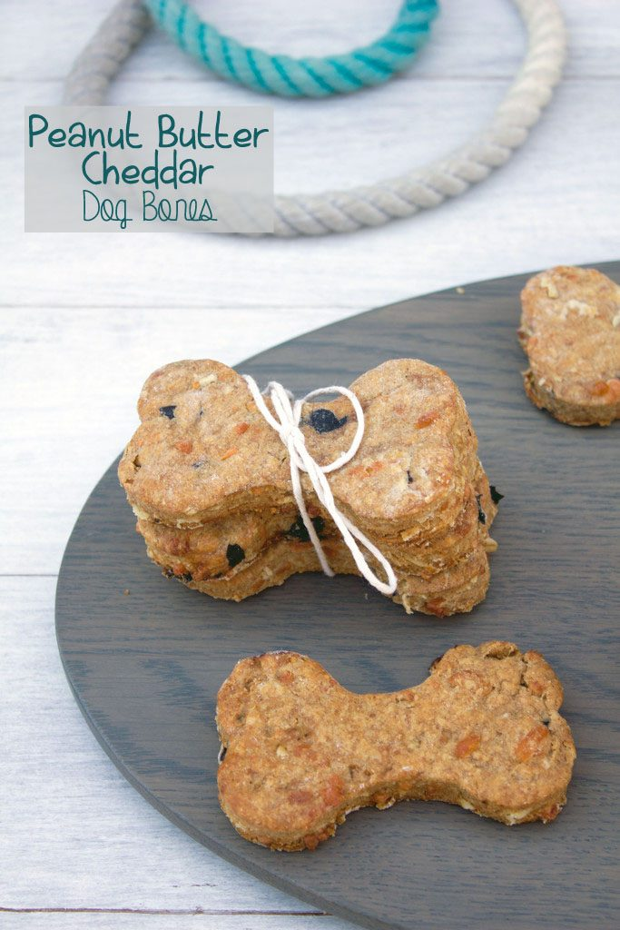 Peanut Butter Cheddar Dog Bones -- A delicious treat for your furry friends | wearenotmartha.com