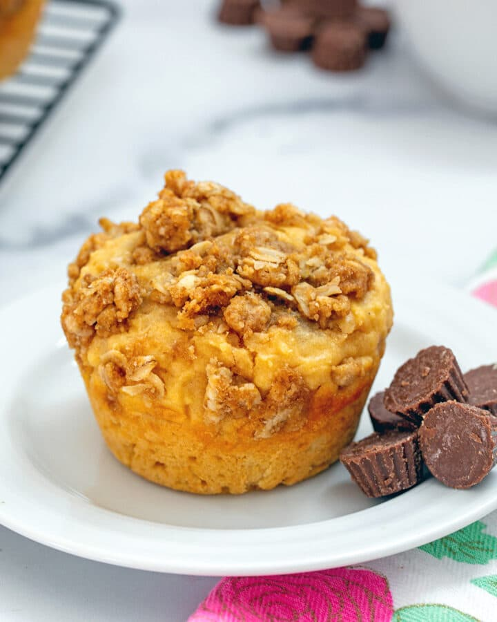Head-on view of peanut butter chocolate muffin on a small white plate surrounded by mini peanut butter cups and more muffins